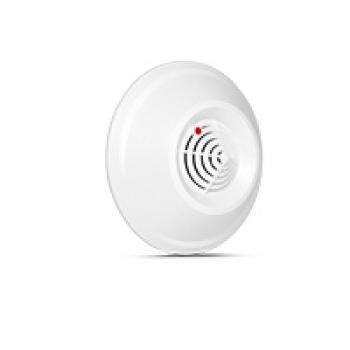DG-1_CO Carbon monoxide detector